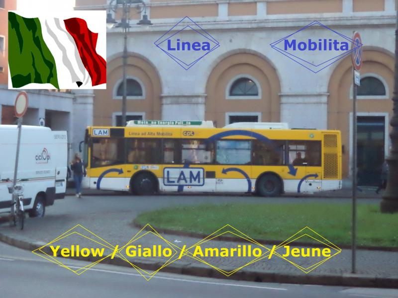 Pisa yellow bus giallo jeune