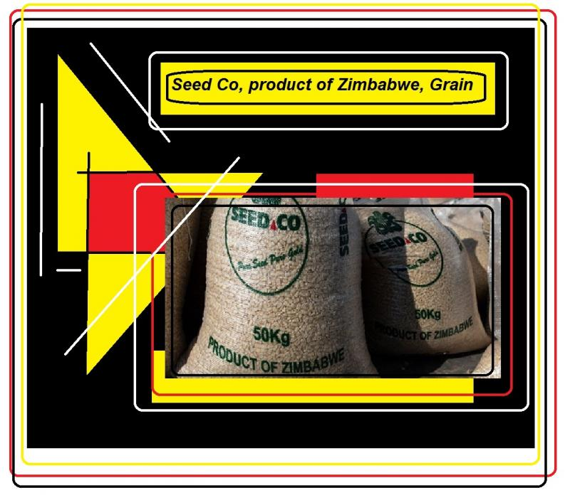 Seed co Product of zimbabwe grain
