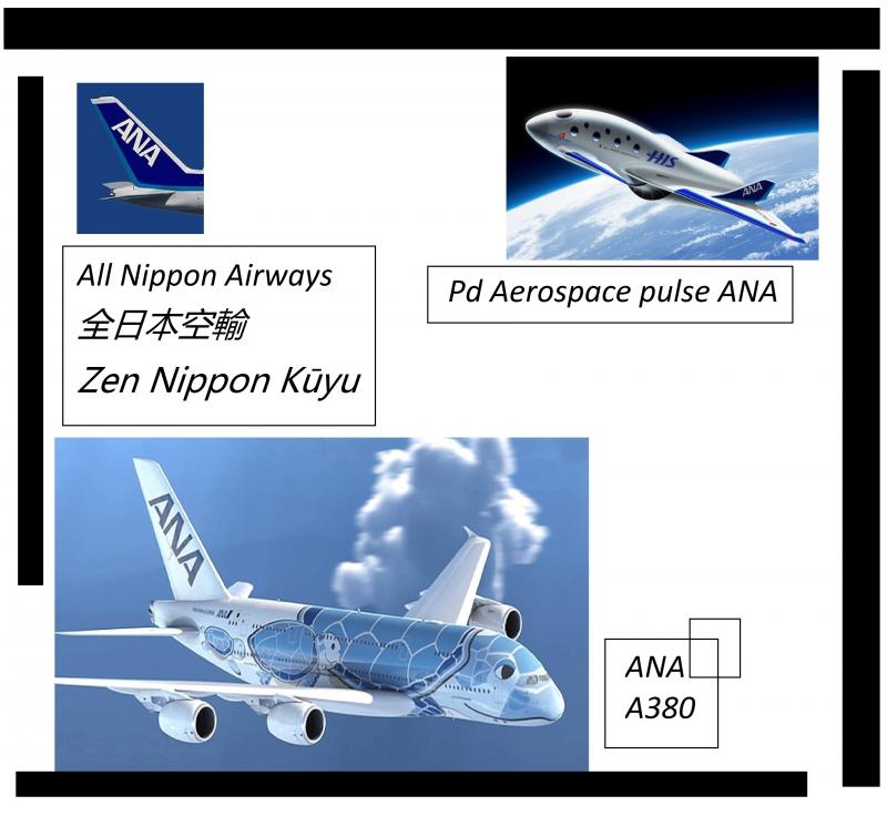 ana a380 pg aerospace pulse turtle