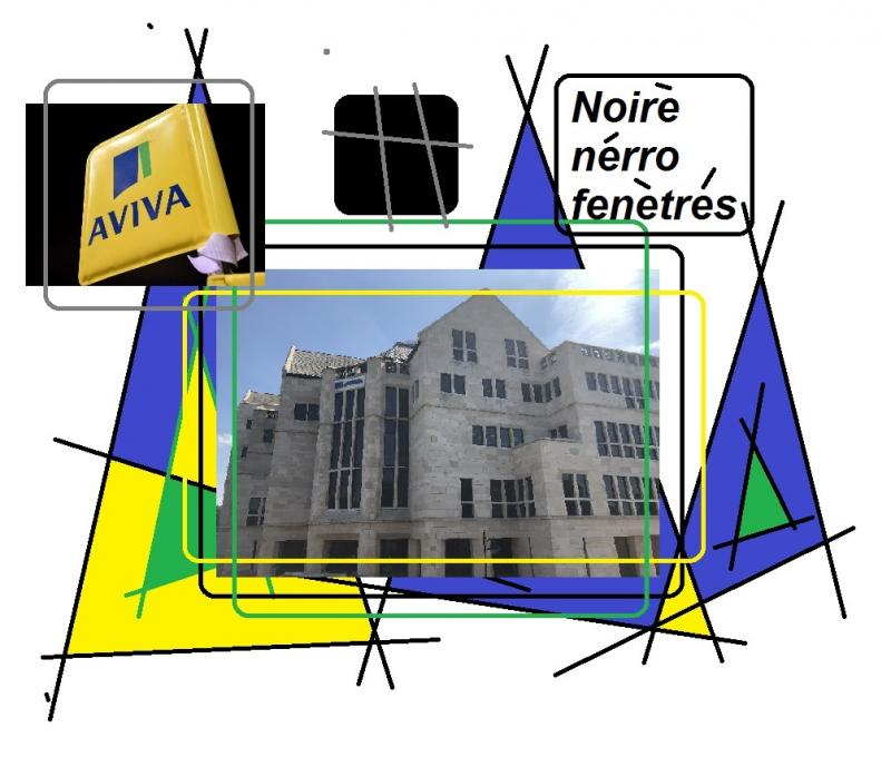 aviva black windows noire nerro fenetres