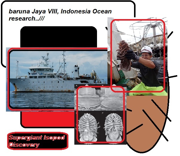 baruna Jaya VIII Indonesia Ocean research supergiant Isopod discovery