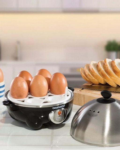 deawoo eLectricaLs./ great Idea egg boLier, steamed./