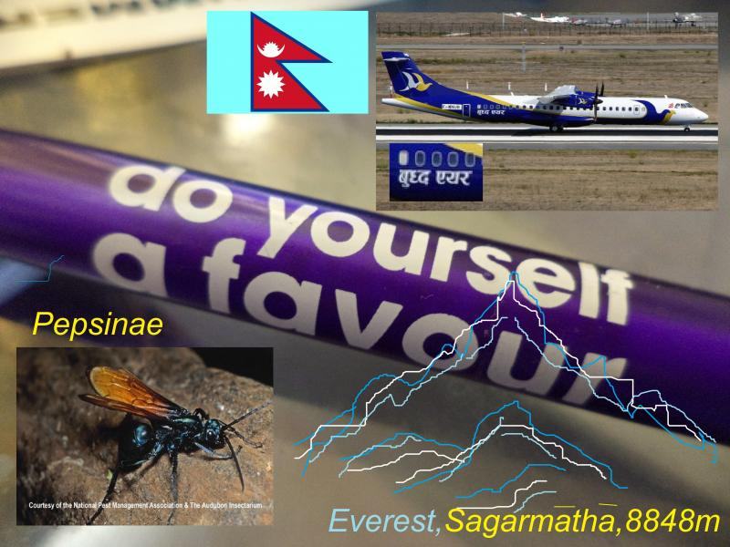 do yourself favour 1 nepal