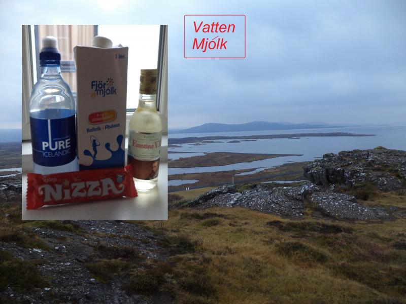 icelandic view water milk