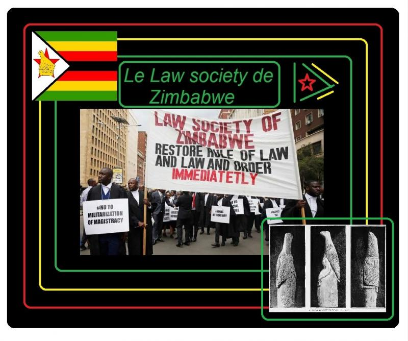 law society de zimbabwe 2