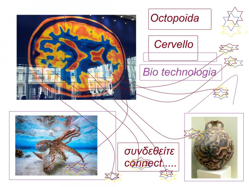 octopus brain bio technologia