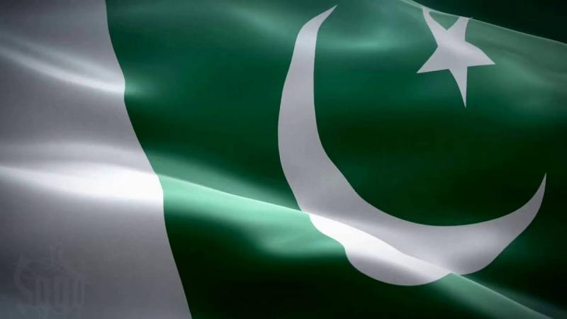pakistan darK green fLag white for minorities