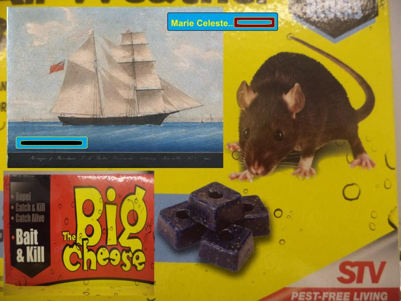 rat 2 cheese celeste