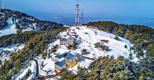 ski resort de Chréa Algeria top ski resort awarded 2.5 stars out of 5
