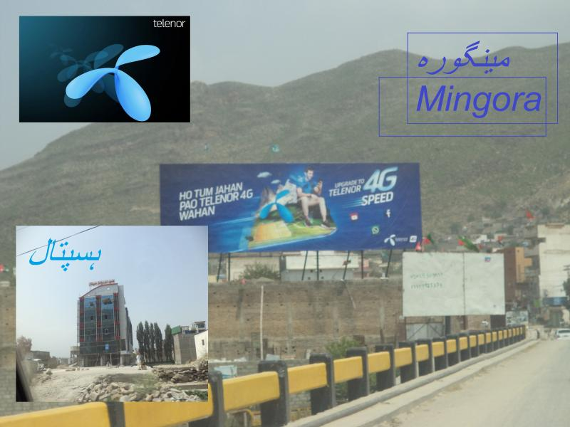 telenor mingora logo hospital building