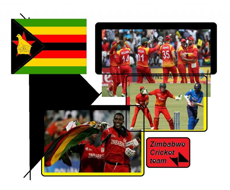 zimbabwe cricket team 7